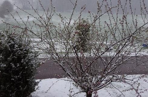 Winterbild Felsfeldhof