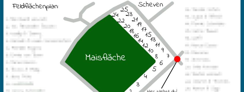 Humbico Felsfeldhof Kall Blühwiese